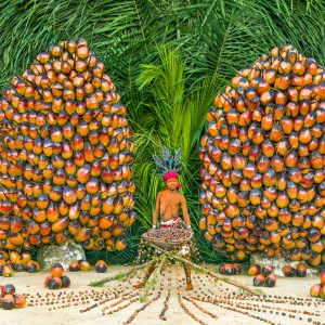 Walé Bakuku, Generous As Palm Nuts