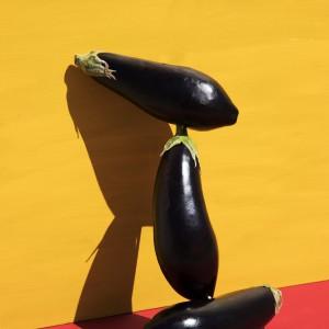 Eggplant Willy
