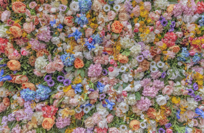 Flowers in Milan I