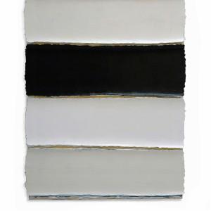 Under the skin - Black and White stripes