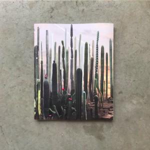 25 years of photo works / Ruud van Empel